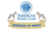 click here for info on AKC Breeder of Merit