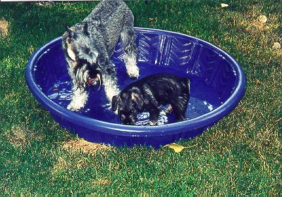 {Enjoying a cool dip with Mom.}