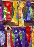 many ribbons